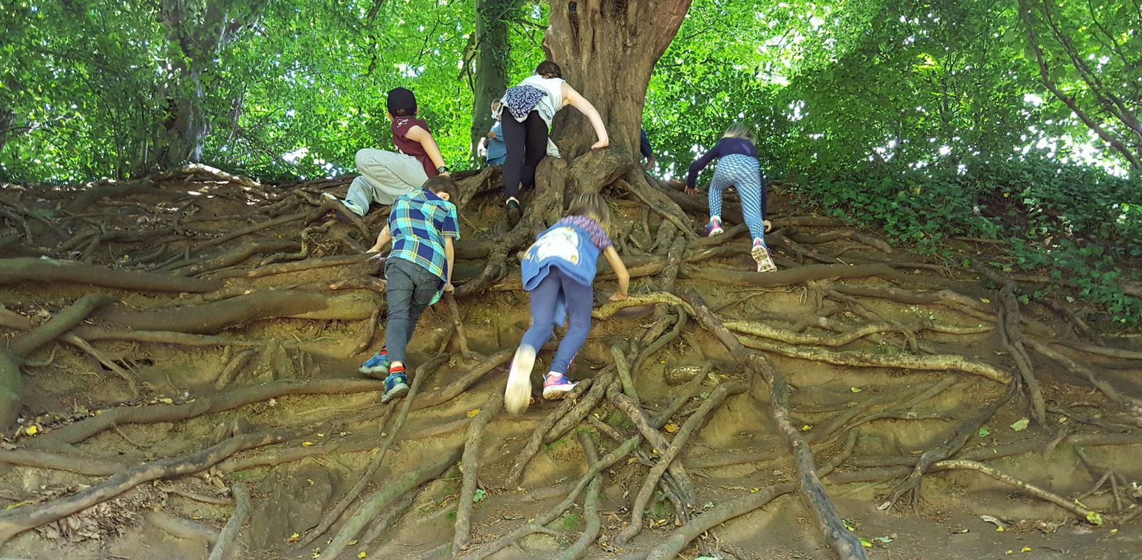 Yew Tree Nursery - Parents